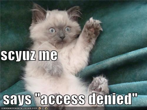 "scyuz me still says ""access denied"""