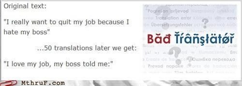 boss,translating,translation