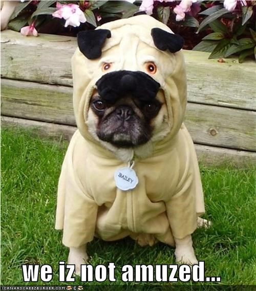 we iz not amuzed...