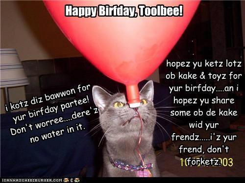 Happy Birfday, Toolbee!!