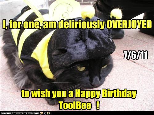 Happy Birthday ToolBee !