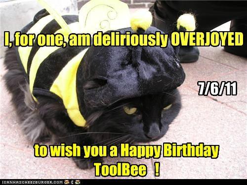 Happy Birthday ToolBee !
