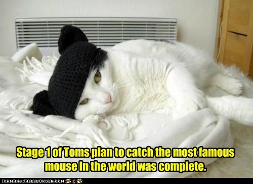 caption,captioned,cat,catch,complete,costume,ears,hat,mickey mouse,mouse,one,plan,Stage