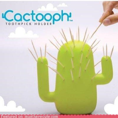 cactus,holder,pointless,toothpicks