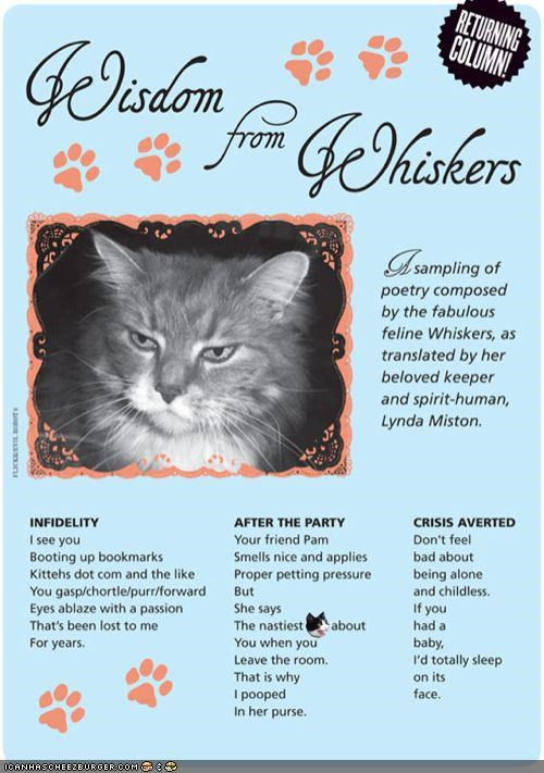 Wisdom From Whiskers: Cat Poetry