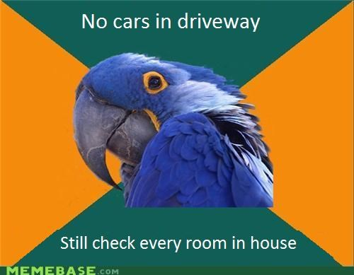 cars,driveway,family,hiding,home,Paranoid Parrot,parents