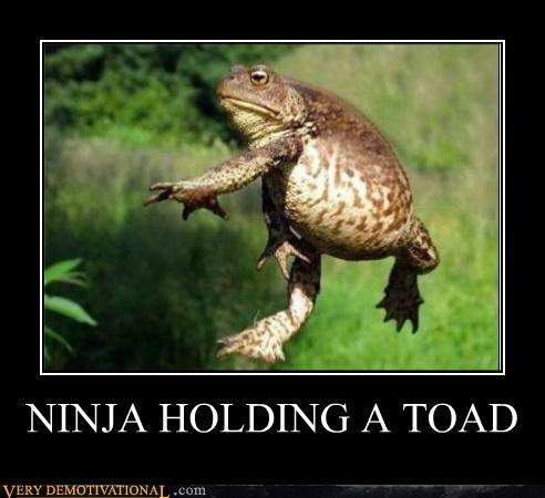 ninja,toad