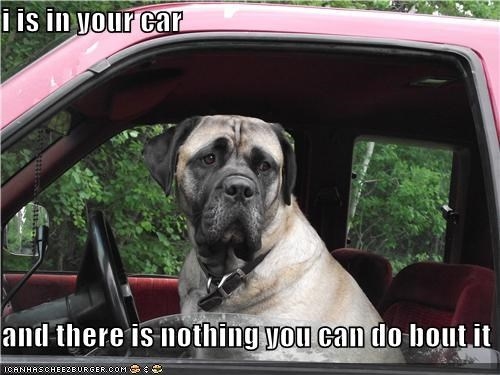 i is in your car  and there is nothing you can do bout it