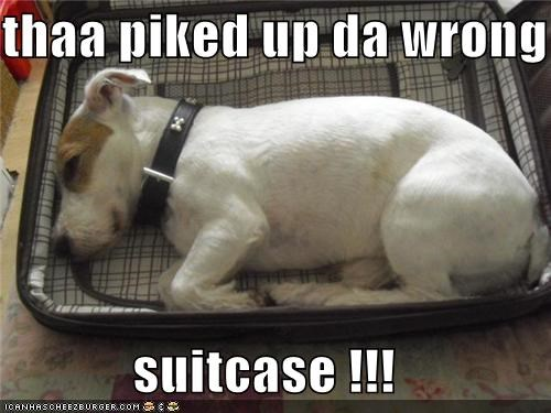 thaa piked up da wrong   suitcase !!!