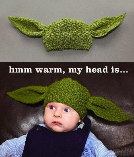 Yoda Head Warmer of the Day