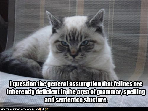 I question the general assumption that felines are inherently deficient in the area of grammar, spelling and sententce stucture.