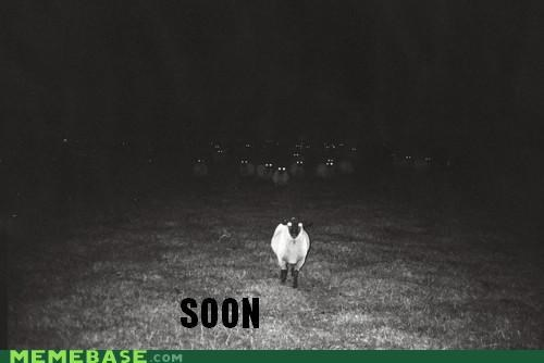 The Time Has Come to BAH-RAM-EWE