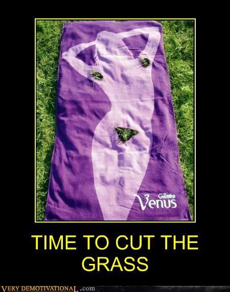 advertisement,grass,hilarious,pubes,razor,wtf