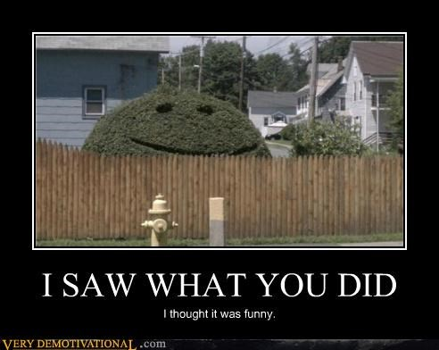 bush,fence,funny,hilarious,i saw what you did