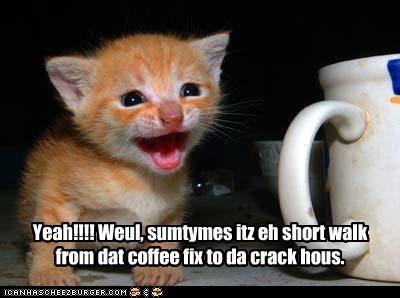 Yeah!!!! Weul, sumtymes itz eh short walk from dat coffee fix to da crack hous.