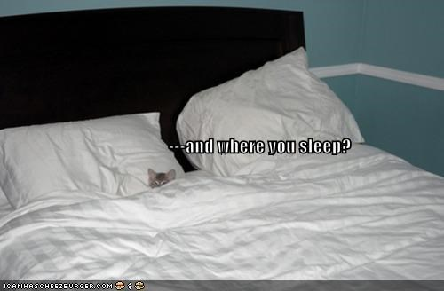 ---and where you sleep?