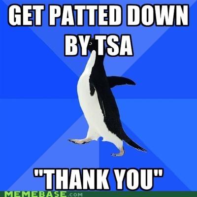 airports,cavity,pat down,socially awkward penguin,TSA