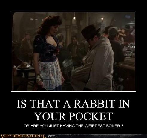 IS THAT A RABBIT IN YOUR POCKET