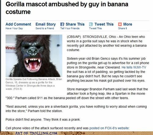 The Gorilla Never Had a Chance