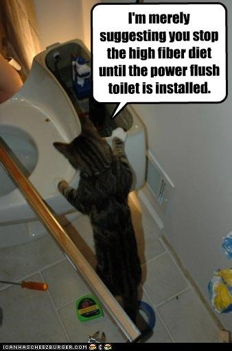 I'm merely suggesting you stop the high fiber diet until the power flush toilet is installed.