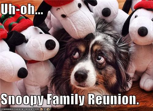 Uh-oh...  Snoopy Family Reunion.