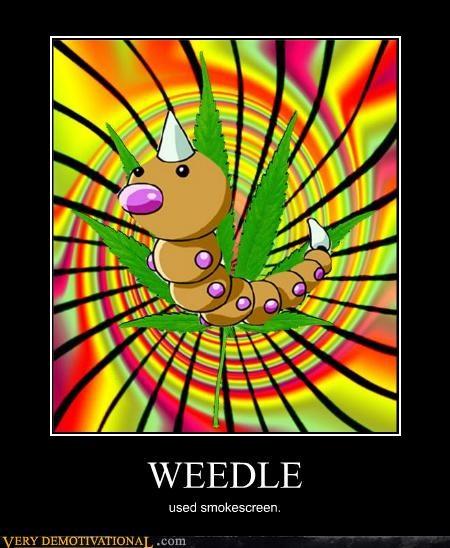 hilarious,Pokémon,smoke screen,weed,weedle