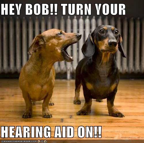 HEY BOB!! TURN YOUR   HEARING AID ON!!