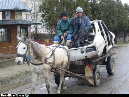 animals,horse,russia,towing