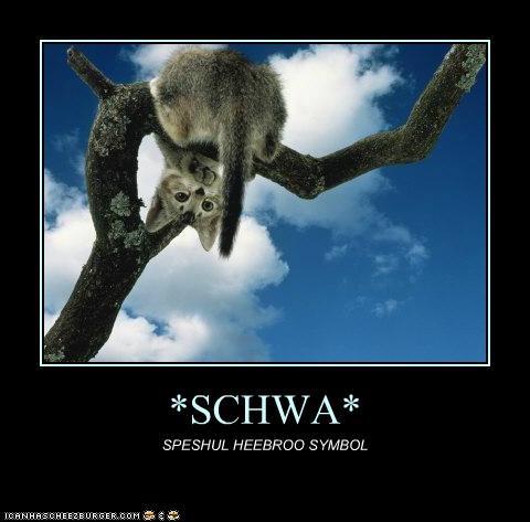 *SCHWA*