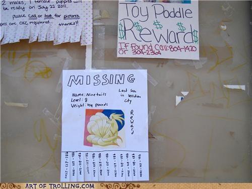 IRL,lost,lost dog,ninetails,Pokémon,poodle,poster,sign