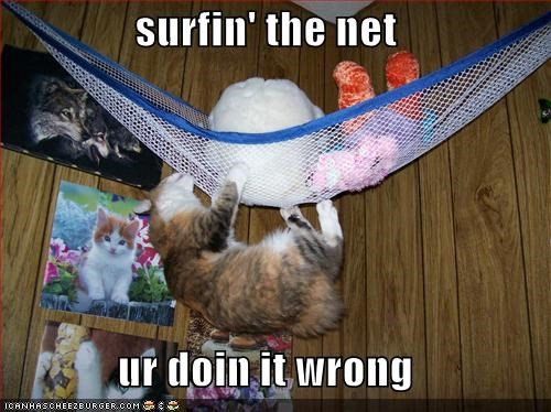 surfin' the net  ur doin it wrong