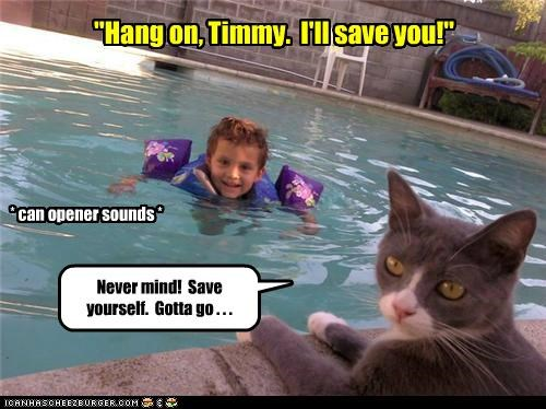 """Hang on, Timmy.  I'll save you!"""