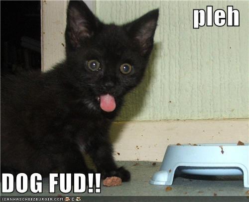pleh  DOG FUD!!