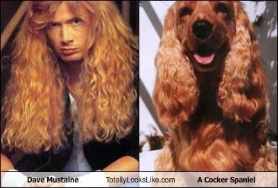 TLL Classics: Dave Mustaine of Megadeth Totally Looks Like A Cocker Spaniel