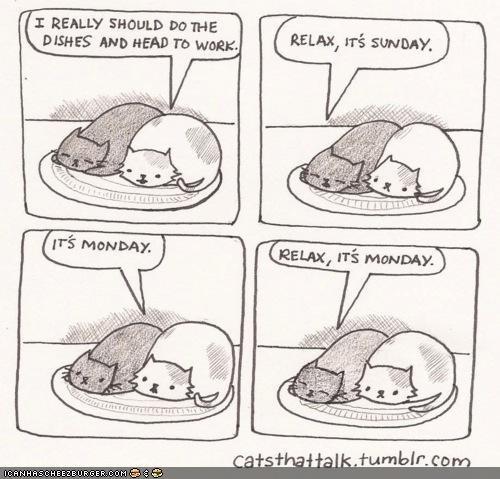 Kitteh Komic of teh Day: Gotta Get Down on Monday