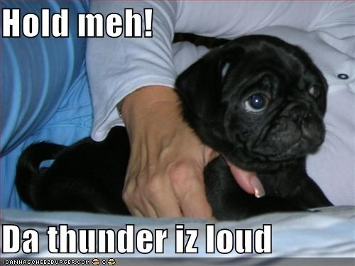 Hold meh!  Da thunder iz loud