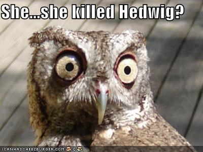 She...she killed Hedwig?