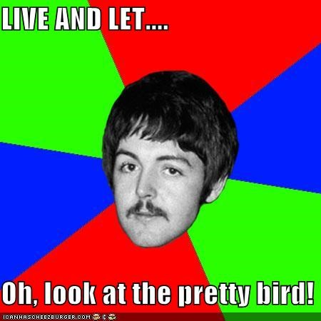 LIVE AND LET....  Oh, look at the pretty bird!