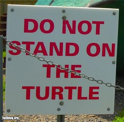 failboat,g rated,oddly specific,signs,turtle,zoo