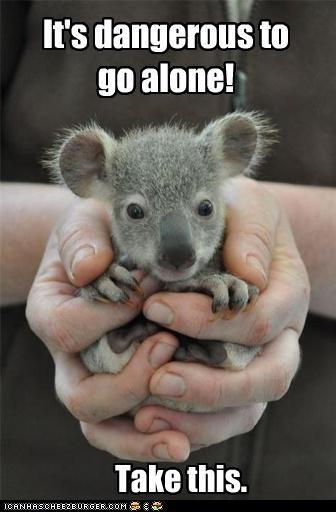 captioned,hands,its-dangerous,koala bear,koalas,squee,take this,video games