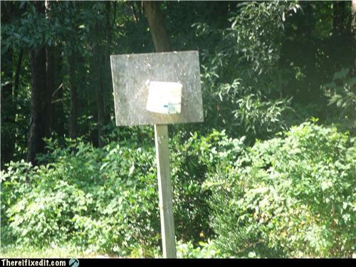 basketball,bucket,dual use,sports