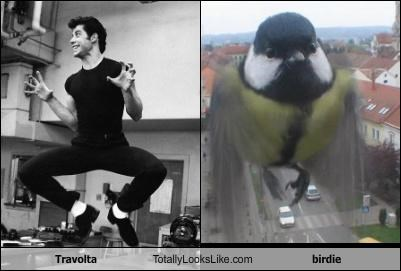 Travolta Totally Looks Like birdie