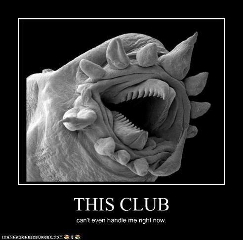 THIS CLUB