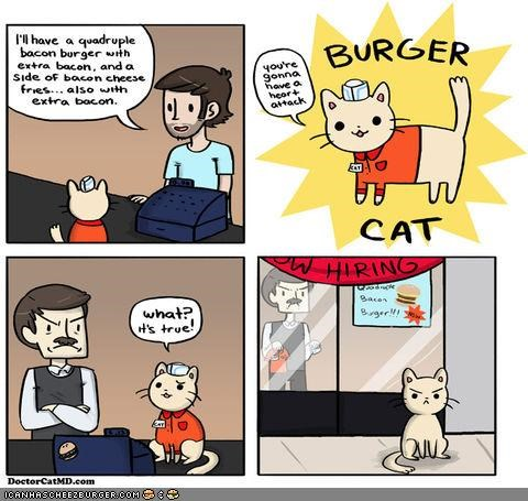 burgers,cheezburgers,comic,comics,doctor cat,doctors,fired,jobs,stories
