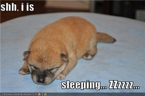 shh, i is  sleeping... ZZzzzz...