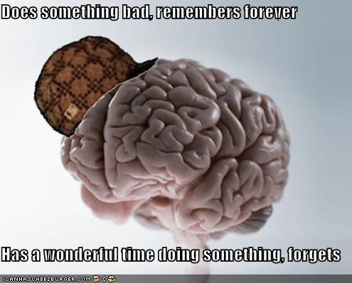 Scumbag Brain: An Elephant Never Regrets