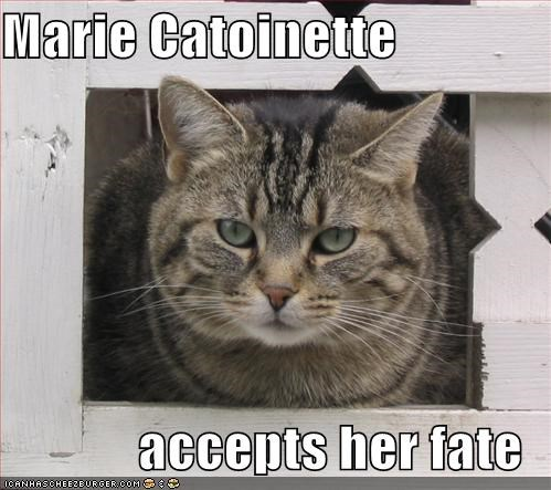 Marie Catoinette  accepts her fate