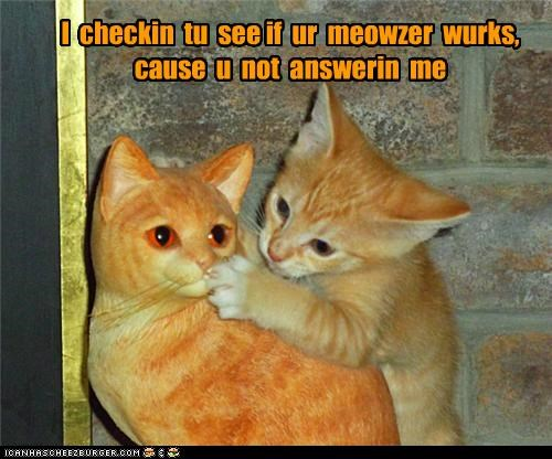 I  checkin  tu  see if  ur  meowzer  wurks,cause  u  not  answerin  me