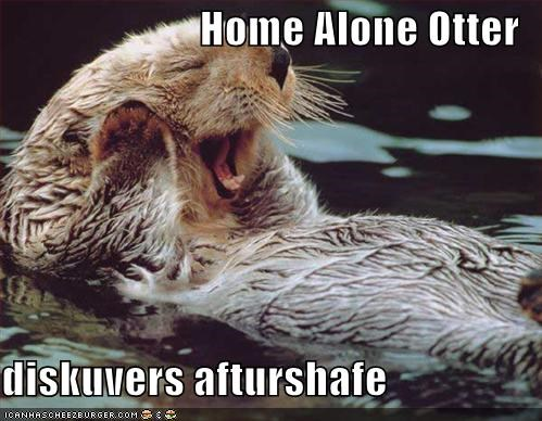 Home Alone Otter   diskuvers afturshafe