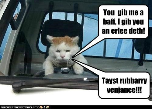 Adventure Kittehs XVIII: Driving Angry 3D